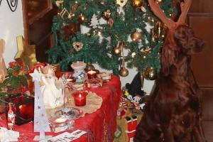 Christmas2012 023