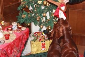 Christmas2012 032
