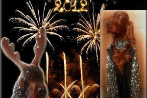Happy New Year 2012 (1)