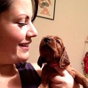 Puppies 047