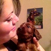Puppies 078