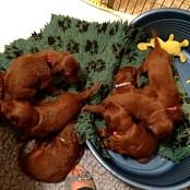 Puppies 083