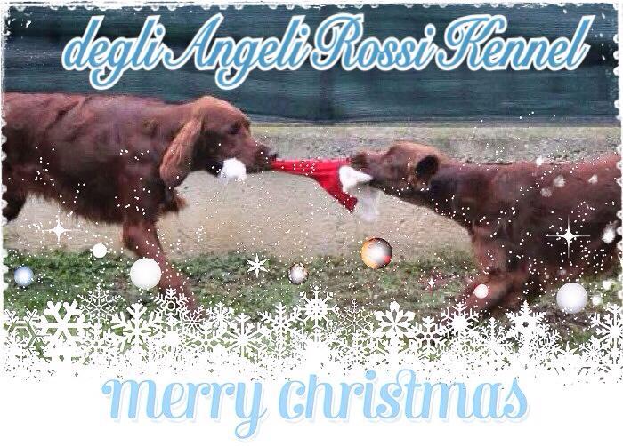 Buon Natale – Merry Christmas – Feliz Navidad